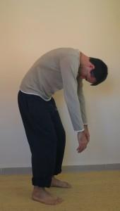 בתמונה: תרגיל מבית מדרשה של רות זיו אייל, המאפשר לחוש את התארכות הגב ואת משקל הידיים והראש. הברכיים המכופפות מסייעות לשרירי הרגליים לחוש את משקל הגוף.